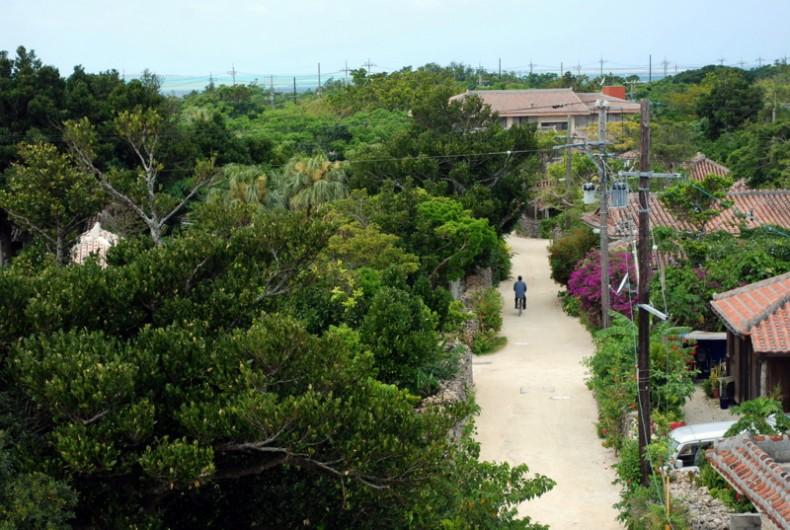 Taketomi dall'alto, un piccolo paradiso tropicale