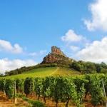 Roche de Solutré, Borgogna *latergram* *regram* #borgogna #bourgogne #burgundy #france #francia #maconnais #macon