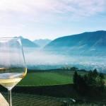 Aperitivo con vista a Merano Aperitif with a view, Merano *latergram* #gewürztraminer #gewurztraminer