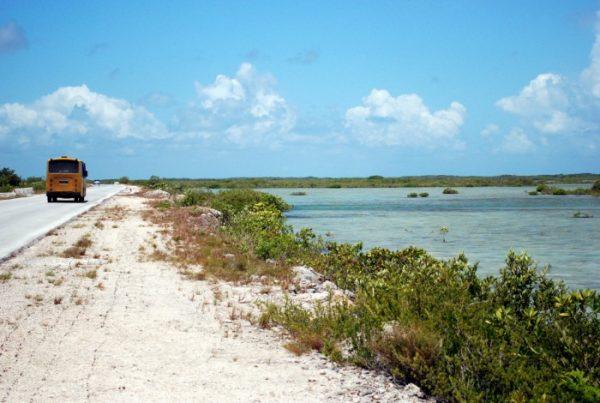 Spiagge cubane: la strada per Cayo Las Brujas