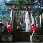 Fushimi Inari Taisha, Kyoto *latergram*