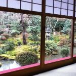 Kyoto, #ryoanji *latergram* #kyoto #ig_kyoto #instagramjapan #japan #Giappone #igerskyoto