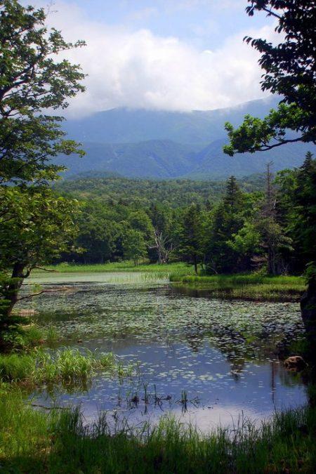 Uno dei Cinque laghi dello Shiretoko (