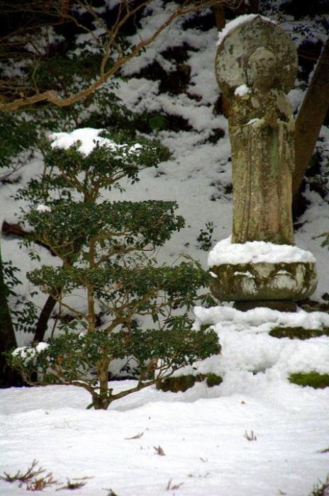 Giardino del tempio Sanzen-in, Kyoto