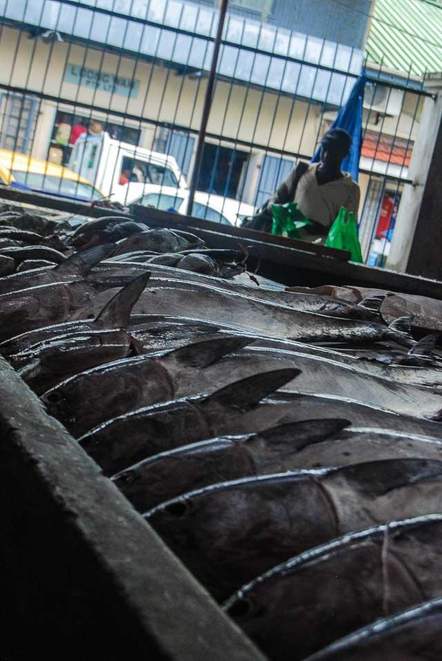Victoria, mercato del pesce (foto di Patrick Colgan, 2017)